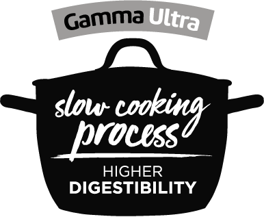 Slow cooking process